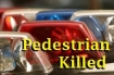 Pedestrian killed