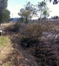 jefferson grass fire