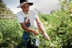 Farming in New Mexico