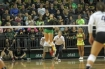 Oregon Ducks Volleyball