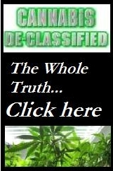 Special Section: Truth telling news about marijuana related issues and events.