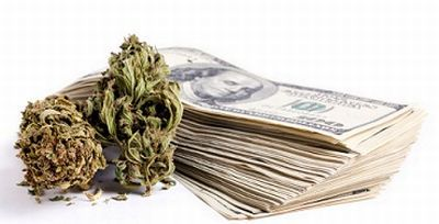 Marijuana Stock Busts
