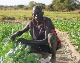 Farmers in Sudan