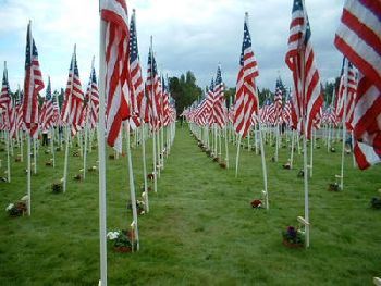 Image from the Field of Flags display