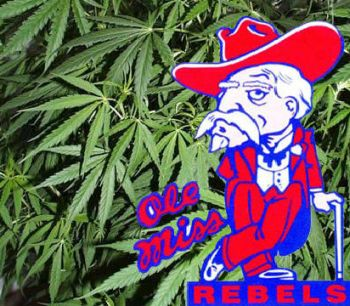 Ole Miss marijuana