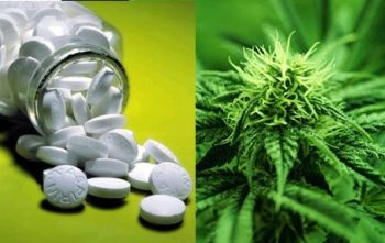 Pills vs pot