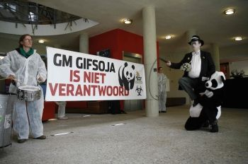 File photo of a GM food protest in The Netherlands