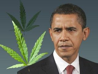 Obama and pot