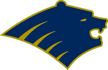Bruins Bear logo