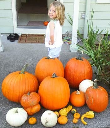 Pumpkins and litle girl